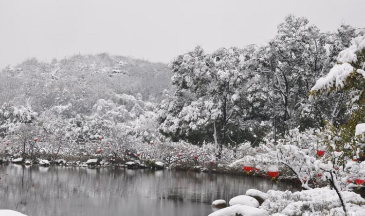 宁沪高速公路_苏州下雪了~ 苏州这些冬天雪景最漂亮的景点,你去过几个?